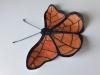 metulj-prijateljstva-marko-3-a-small