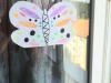 maida-metulj-small
