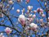 picsart_03-27-05-11-58