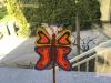 marko-metulj_0